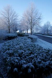 Snowbound Luton